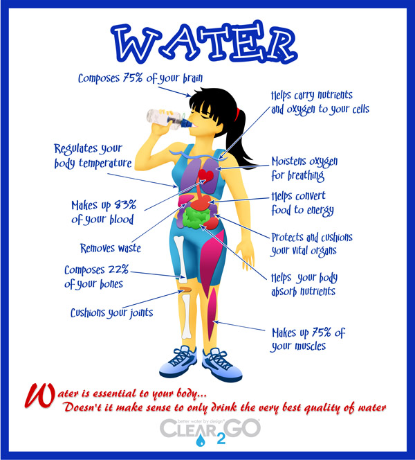 Water is critical for our bodies to function. Staying hydrated will improve all of the activities and your looks. Forever Fit, Duncan,BC